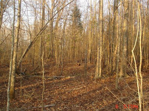 Land, Hwy 397 Louisville, MS : Starkville : Oktibbeha County : Mississippi