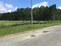 5.89 Acre Lot Hwy 25 Frontage : Starkville : Oktibbeha County : Mississippi
