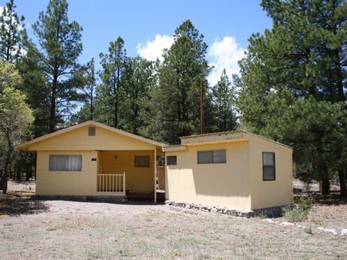 Mountain Cabin Chama Below Brazos : Chama : Rio Arriba County : New Mexico