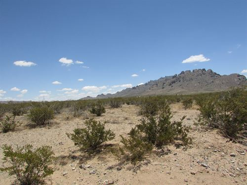 Land in Southwest New Mexico : Deming : Luna County : New Mexico