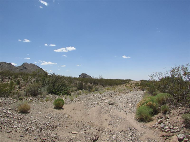 Land For Sale in Deming New Mexico : Deming : Luna County : New Mexico