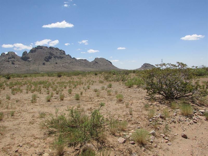 1/2 Acres Base Florida Mountains : Deming : Luna County : New Mexico