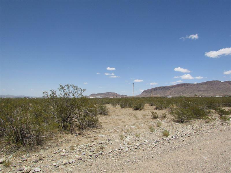 1/2 Acre Base Florida Mountains : Deming : Luna County : New Mexico