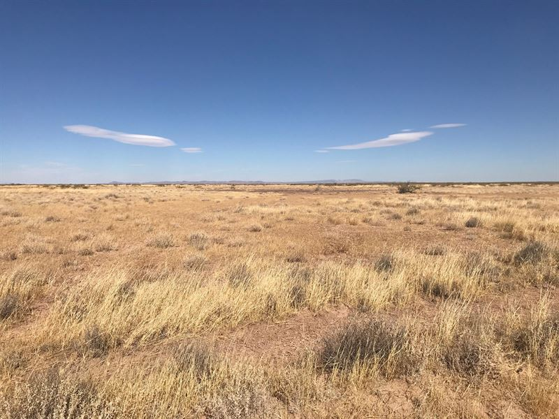 New Mexico Land For Sale : Deming : Luna County : New Mexico