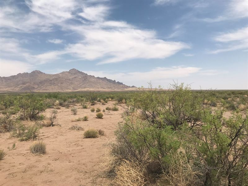 Great Remote Location East Deming : Deming : Luna County : New Mexico