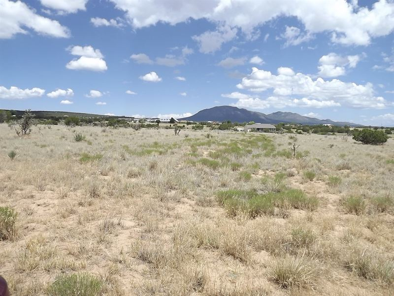 5 Acre Residential Building Lot : Edgewood : Santa Fe County : New Mexico