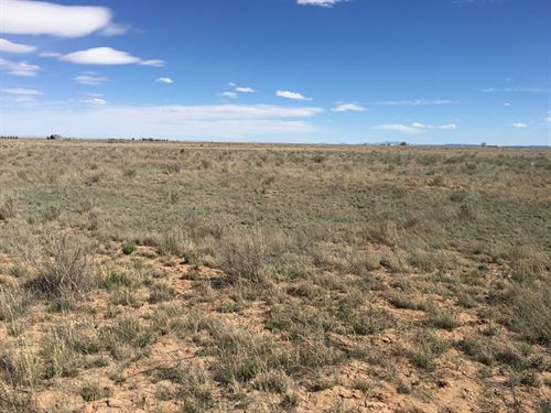 Vacant Land Residential Lot Central : McIntosh : Torrance County : New Mexico