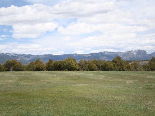10 Acres Prime Irrigated Land Views : Rutheron : Rio Arriba County : New Mexico