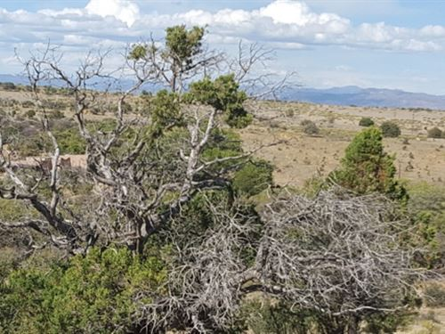 Available Land In Silver City, NM : Silver City : Grant County : New Mexico