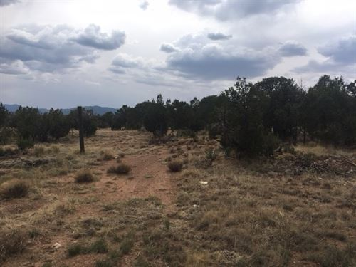 Wooded Lot Central New Mexico Home : Tajique : Torrance County : New Mexico