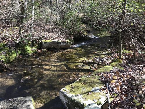 8.57 Acres, Wooded, Gently Rolling : Pikeville : Bledsoe County : Tennessee