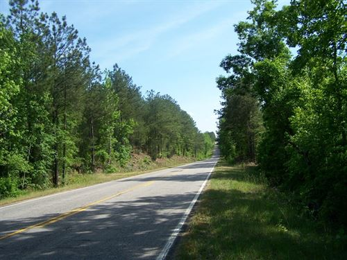 Rural Winnsboro, SC Wooded Acreage : Winnsboro : Fairfield County : South Carolina