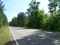 Rural Winnsboro, SC Wooded Acreage : Winnsboro : Fairfield County : South Carolina