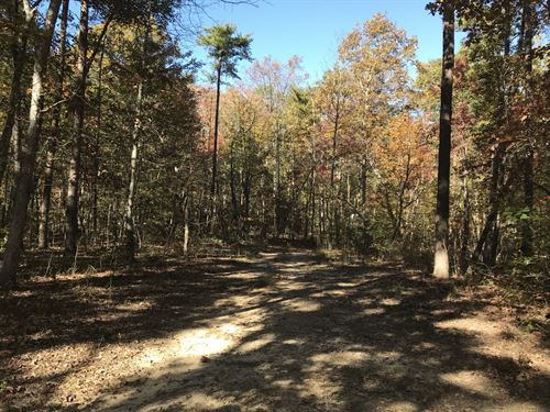 8.86 Ac/gently Rolling/wooded : Pikeville : Bledsoe County : Tennessee