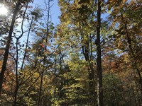 Private Residential/Farm 5.89 Acres : Pikeville : Bledsoe County : Tennessee