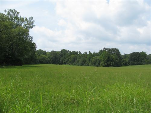 Land On Hwy In Adamsville, TN : Adamsville : McNairy County : Tennessee