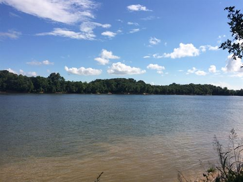 Tennessee River Front Land, River : Crump : Hardin County : Tennessee