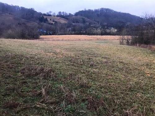 Culleoka, Tn Maury County 8 Acres : Culleoka : Maury County : Tennessee