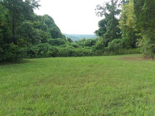 Unrestricted Vacant Land Building : Lyles : Hickman County : Tennessee