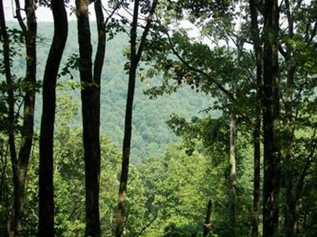 5.35 Acres..bluff Lot..streams : Pikeville : Bledsoe County : Tennessee