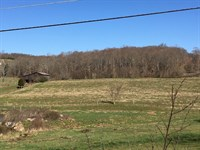 East Tennessee Mini Farm : Rogersville : Hawkins County : Tennessee