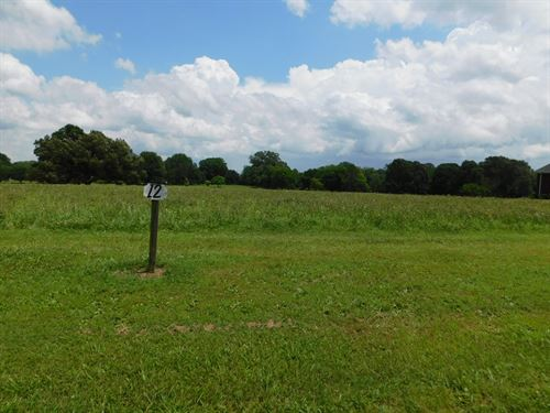 Lot To Build An Established : Savannah : Hardin County : Tennessee