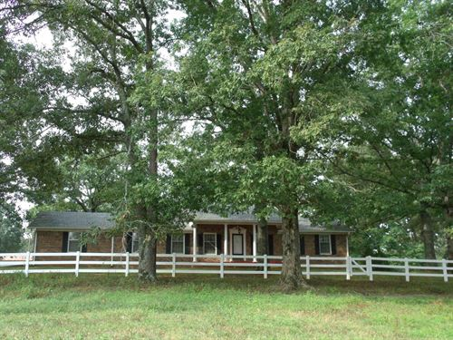 Tn Mini Farm, Basement, Pasture : Savannah : Hardin County : Tennessee