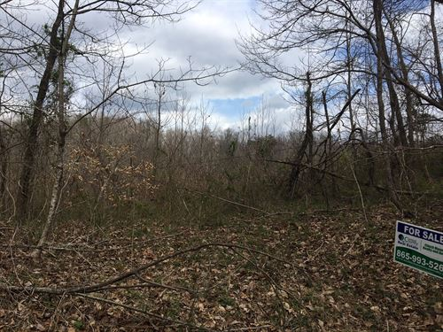 Unrestricted 4.26 Acres Thorn Hill : Thorn Hill : Grainger County : Tennessee