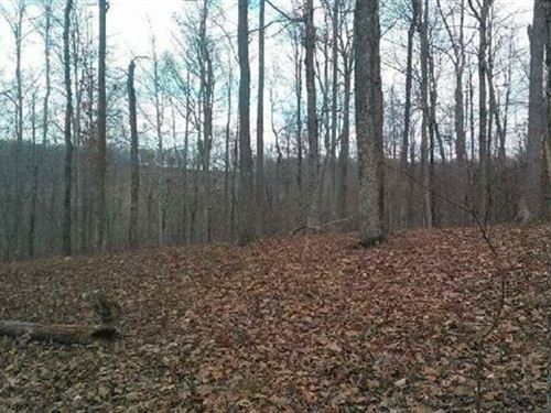 Lot 86 Pinnacle Point Sharps : Sharps Chapel : Union County : Tennessee