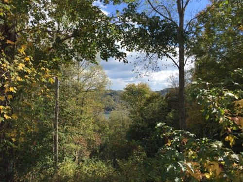Wooded Lot Dekalb County TN : Smithville : Dekalb County : Tennessee