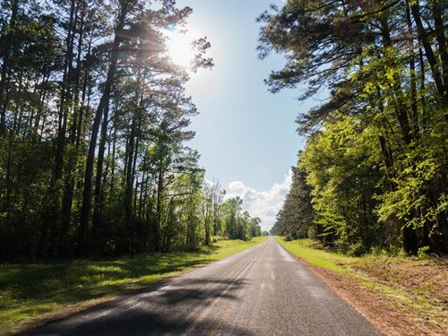 Sam Rayburn Land, 3 Acre Lots, 1Mi : Broaddus : San Augustine County : Texas