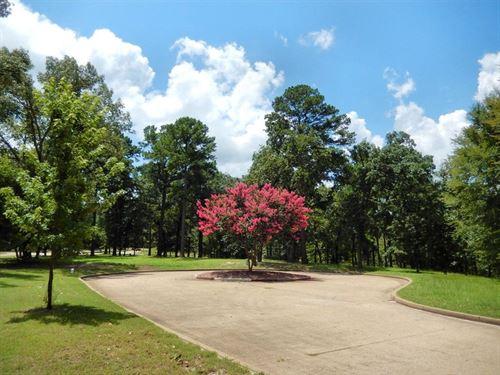 Estate Size Waterview Lot East : Bullard : Cherokee County : Texas