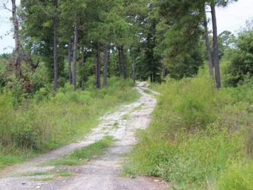 20+ Acres / Commercial Site : De Kalb : Bowie County : Texas