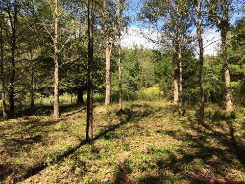 Peaceful & Private Acreage Trace : Frankston : Anderson County : Texas