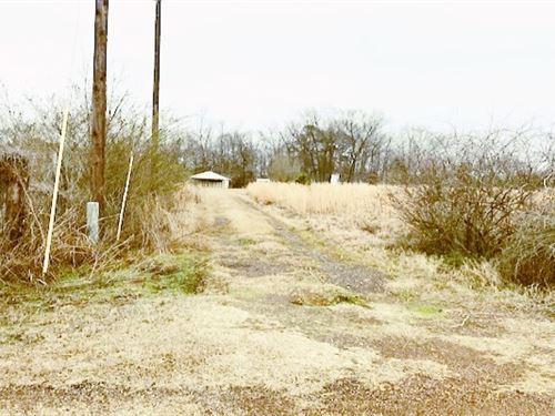 Ranchette / 9+ Acres : Naples : Morris County : Texas