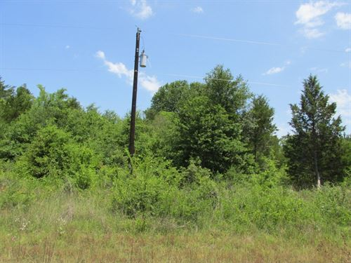 Great Residential Building Location : Palestine : Anderson County : Texas