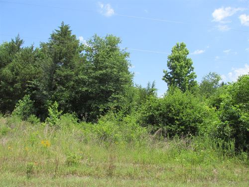 Great Building Location Residential : Palestine : Anderson County : Texas