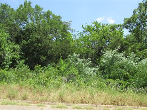 Small Wooded Acreage Inside City : Palestine : Anderson County : Texas