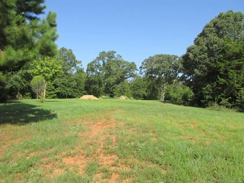 Lot In Palestine City Limits : Palestine : Anderson County : Texas