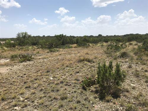 Undeveloped Land Outside Mertzon : Mertzon : Irion County : Texas