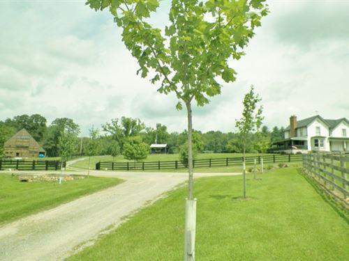Historic Farmhouse in Wythe, Co, VA : Crockett : Wythe County : Virginia