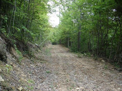 Hunting Property In Abingdon VA : Abingdon : Washington County : Virginia