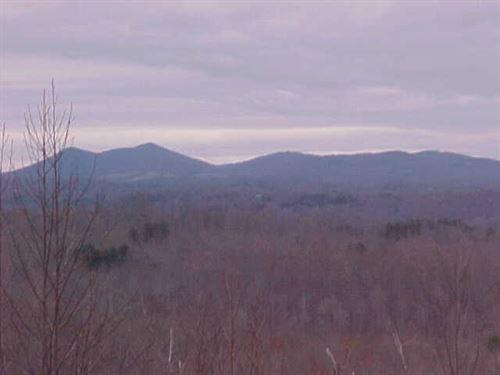 17.5 Acres Land Henry County : Bassett : Henry County : Virginia