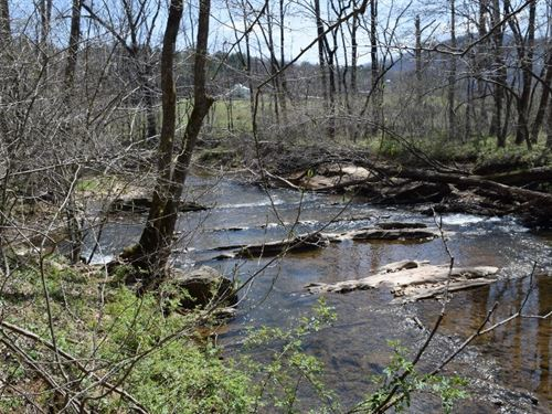 Riverfront Wooded Land Franklin : Callaway : Franklin County : Virginia