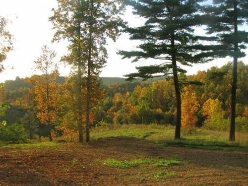 10 Acre Building Site Copper Hill : Copper Hill : Floyd County : Virginia