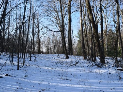Land For Sale in Copper Hill VA : Copper Hill : Floyd County : Virginia
