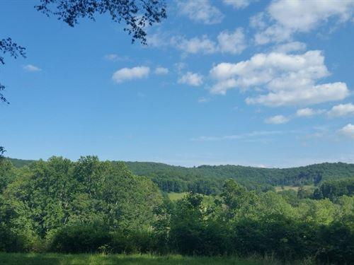 Mountain Retreat Tucked Away : Floyd : Virginia