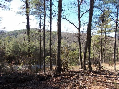 Private Wooded Building Site Floyd : Floyd : Virginia