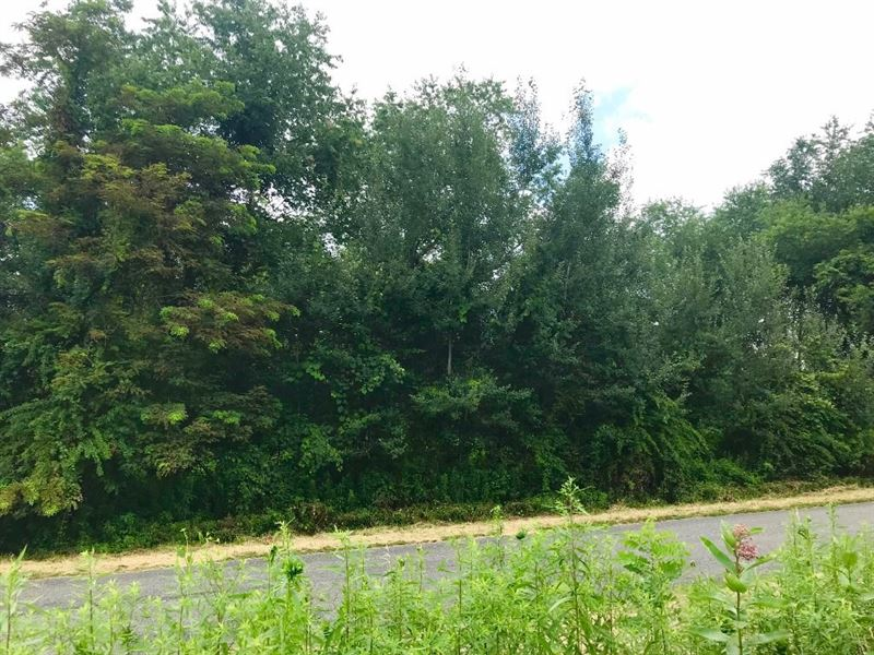 Building Lot Olde Mill Golf Course : Laurel Fork : Carroll County : Virginia