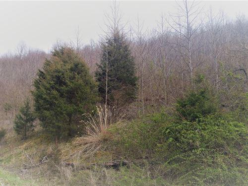 Recreational Mini-Farm Water : Lebanon : Russell County : Virginia
